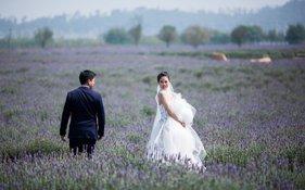 刘香慈赴云南婚纱摄影,薰衣草婚纱照超唯美